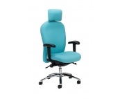 FREE CHAIR ASSESSMENT